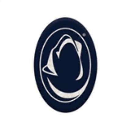 Penn State University 3 in. x 2 in. Decorative Garden Rock