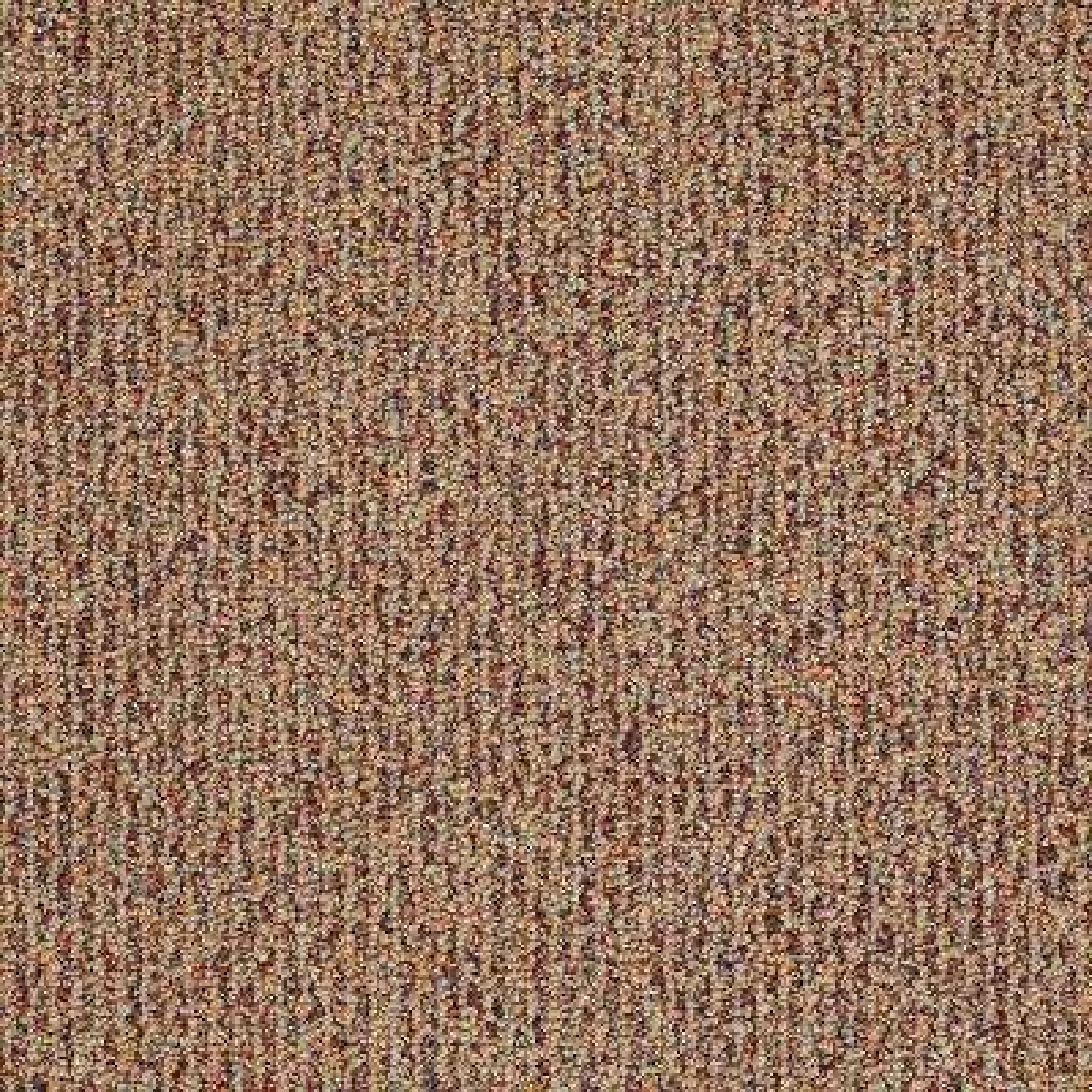 Carpet Sample - Fallbrook - In Color Terra Cotta 8 in. x 8 in.