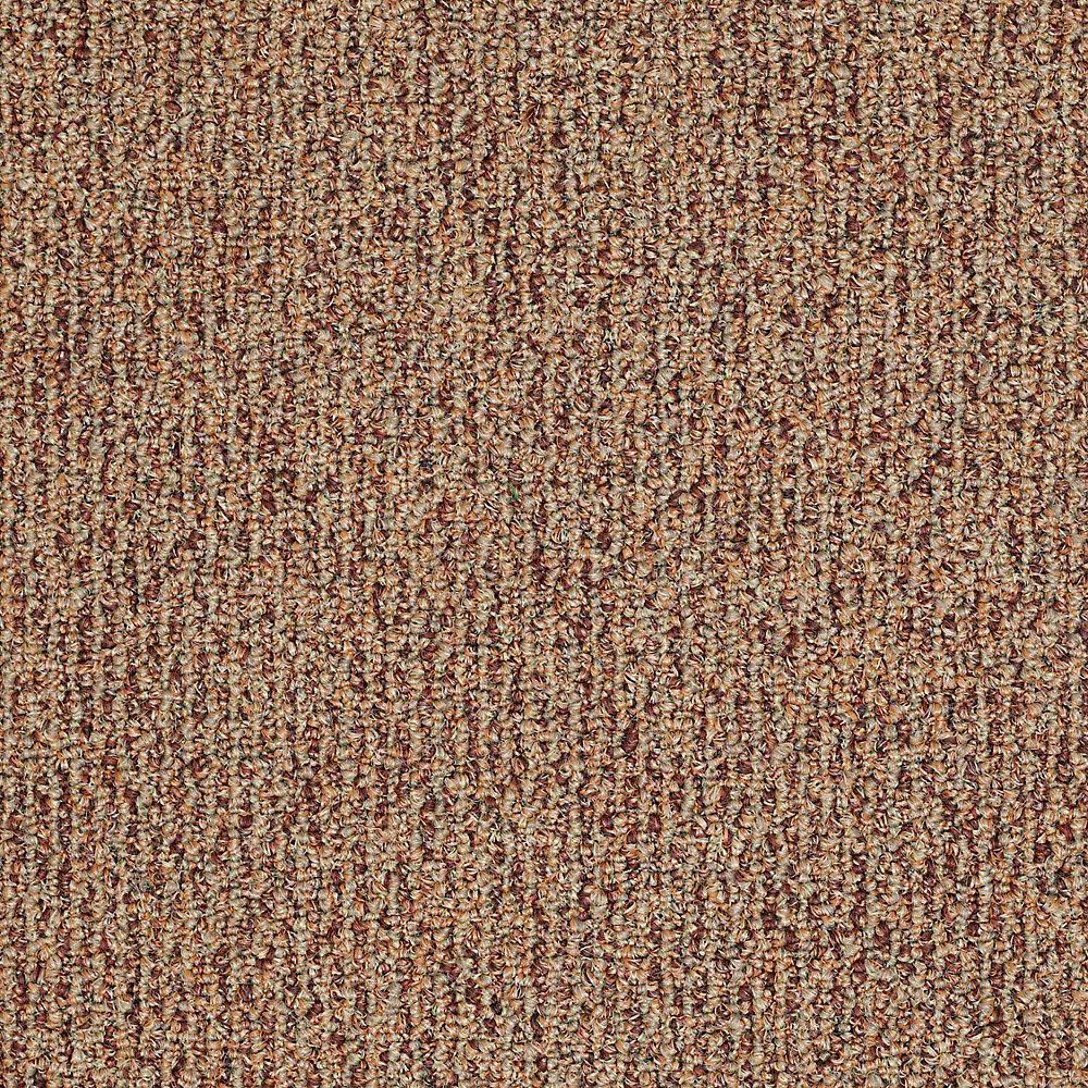 Trafficmaster Commercial Carpet Sample Fallbrook In