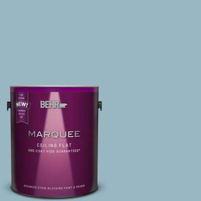 1 gal. #S470-3 Tinted to Peaceful Blue One-Coat Hide Flat Interior Ceiling Paint and Primer in One