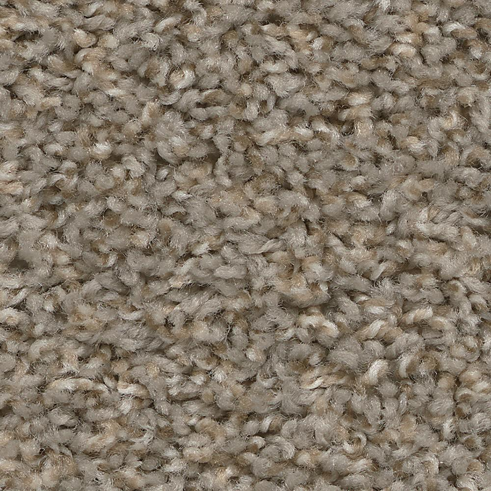 Trafficmaster Wonder Color Stunner Texture 12 Ft Carpet H4115 317 1200 The Home Depot