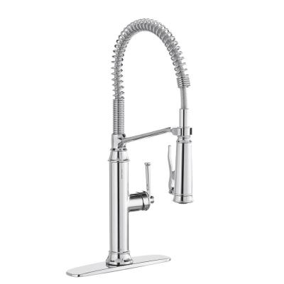 Linscott Single-Handle Coil Springneck Pull-Down Sprayer Kitchen Faucet in Chrome