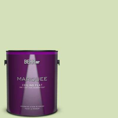 1 gal. #MQ4-45 Spring Glow One-Coat Hide Ceiling Flat Interior Paint and Primer in One