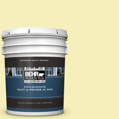 Behr Premium Plus Ultra 5 Gal P430 1 Summer House Satin Enamel Exterior Paint And Primer In One 985005 The Home Depot
