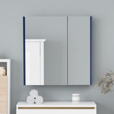 28 in. x 30 in. Surface Mount Medicine Cabinet in 2 Door Blue with 2 Shelves and Mirror