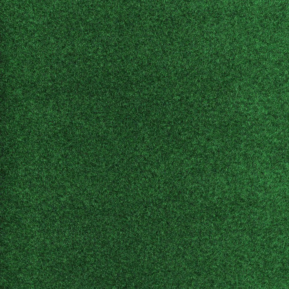 Color Green Texture 12 Ft. Carpet