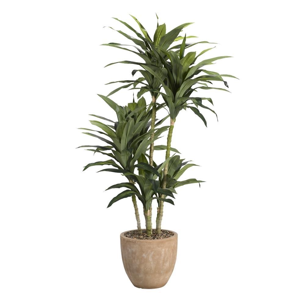 D&W Silks Indoor 6.5 ft. Dracaena Tree in Round Planter 317902