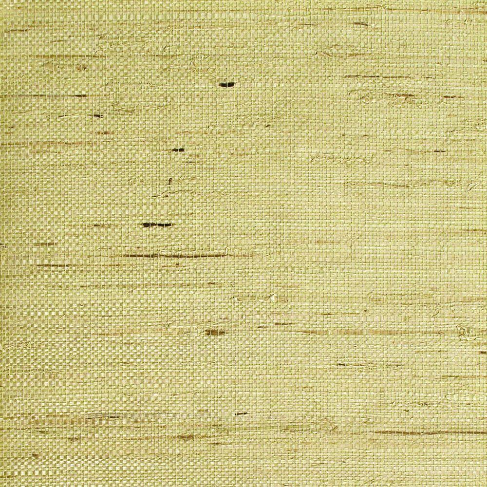 The Wallpaper Company 72 sq. ft. Grass Acorus Wallpaper-DISCONTINUED