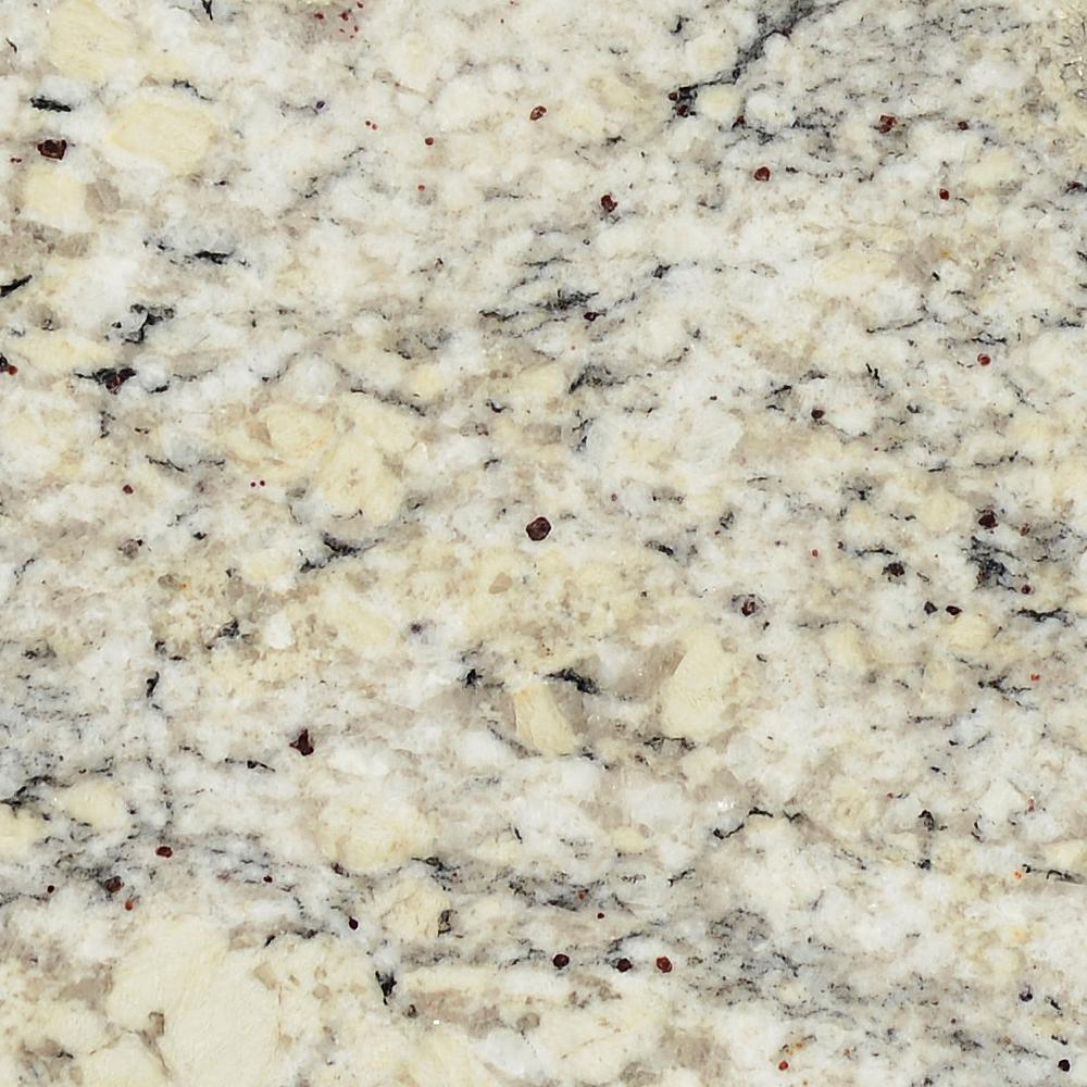 Stonemark Granite 3 in. x 3 in. Granite Countertop Sample in White Ice