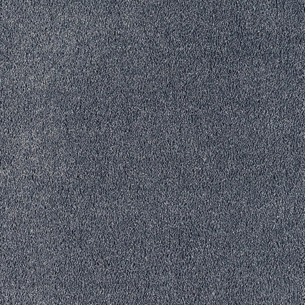 Lifeproof Carpet Sample Windfall T Color Statue
