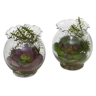 Succulent with Fluted Vase (Set of 2)