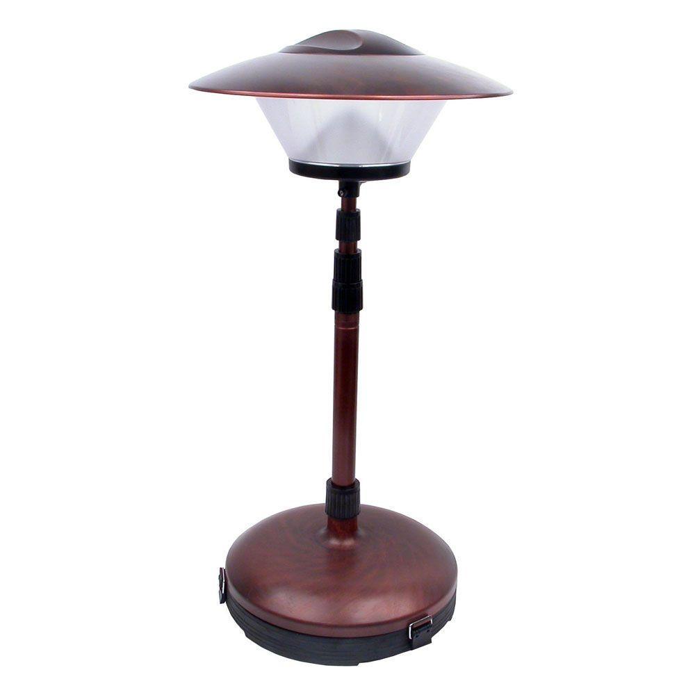 Dorcy LED Adjustable Bronze Patio Lamp