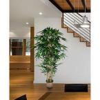 72 in. Tall Bamboo Tree Artificial Faux Lifelike in Bamboo Wicker Planter (Set of 2)