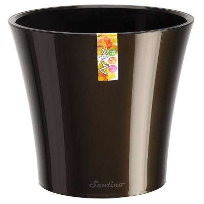 Arte 7.7 in. Black-Gold/Black Plastic Self Watering Planter