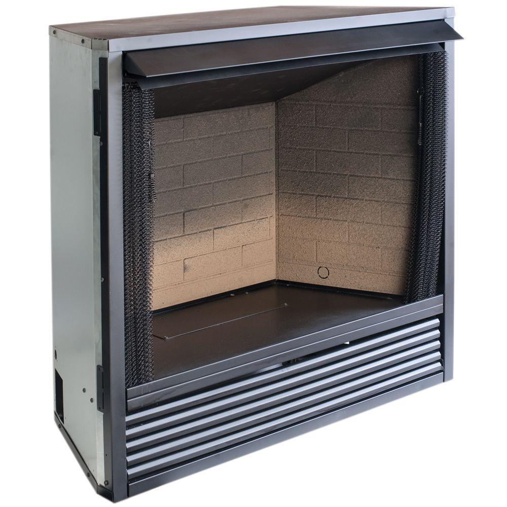 ProCom 29 in. Vent-Free Dual Fuel Firebox Insert-FBNSD28T - The ...