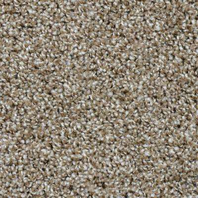 Carpet Sample - Dignified - Color Palisades Texture 8 in. x 8 in.