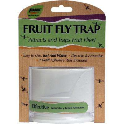 Fruit Fly Trap (6-Pack, 6-Traps)