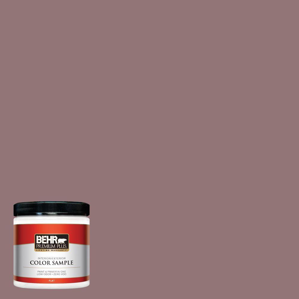 BEHR Premium Plus 8 oz. #110F-5 Phantom Hue Interior/Exterior Paint Sample