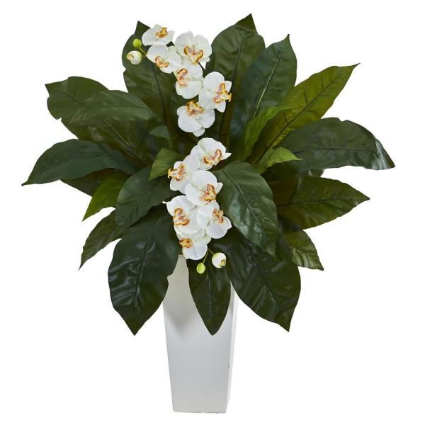 Nearly Natural Orchid and Birds-Nest Fern Artificial Arrangement in White Planter