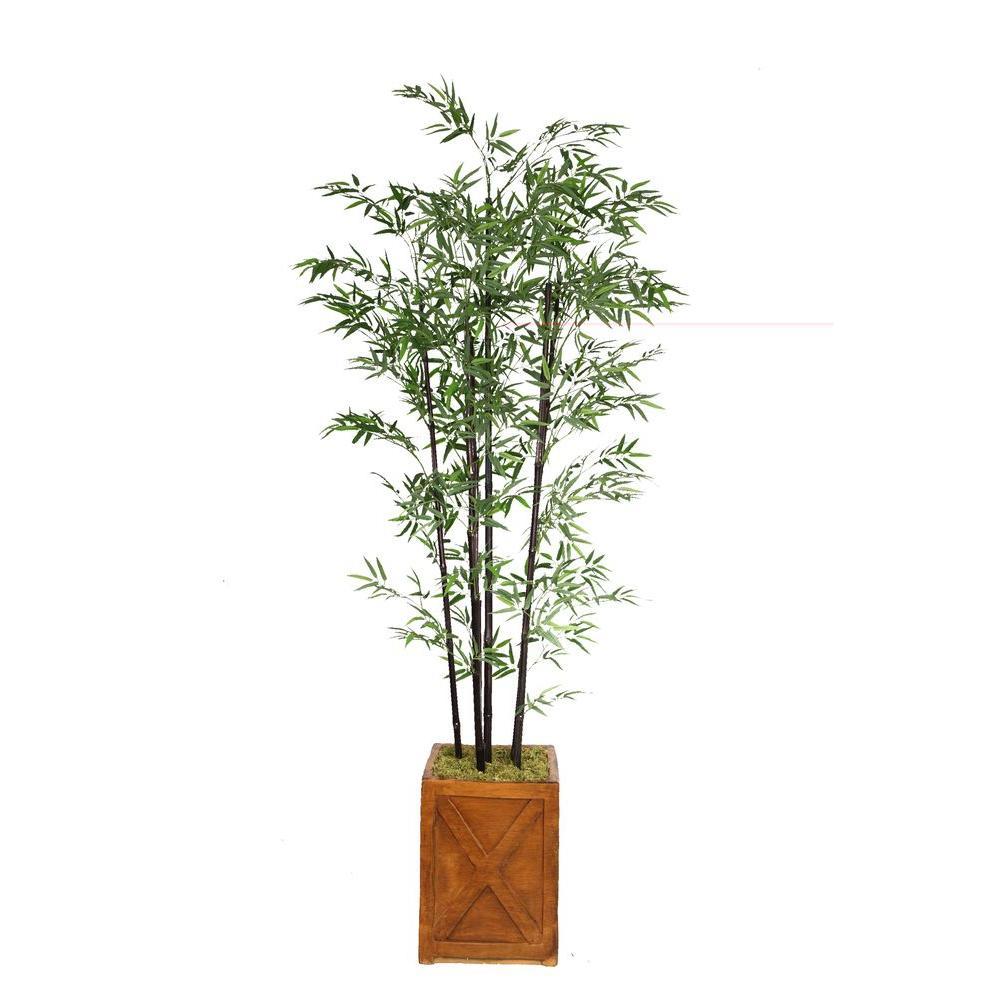 81 in. Tall Black Bamboo Tree in 13 in. Fiberstone Planter