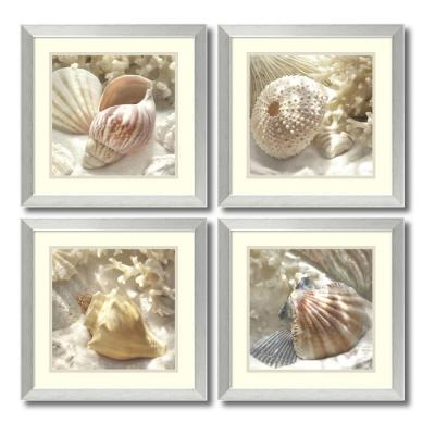 "18 in. W x 18 in. H Each ""Coral Shell- Set of 4"" by Donna Geissler Framed Art Print"