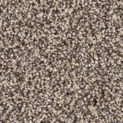 Carpet Sample - Scout's Crossing I - Color Survey Texture 8 in. x 8 in.