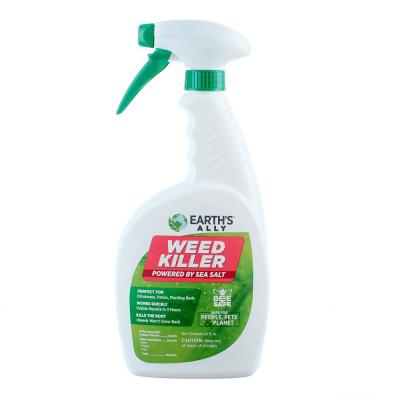 24 Oz. Weed and Grass Killer Ready-to-Use