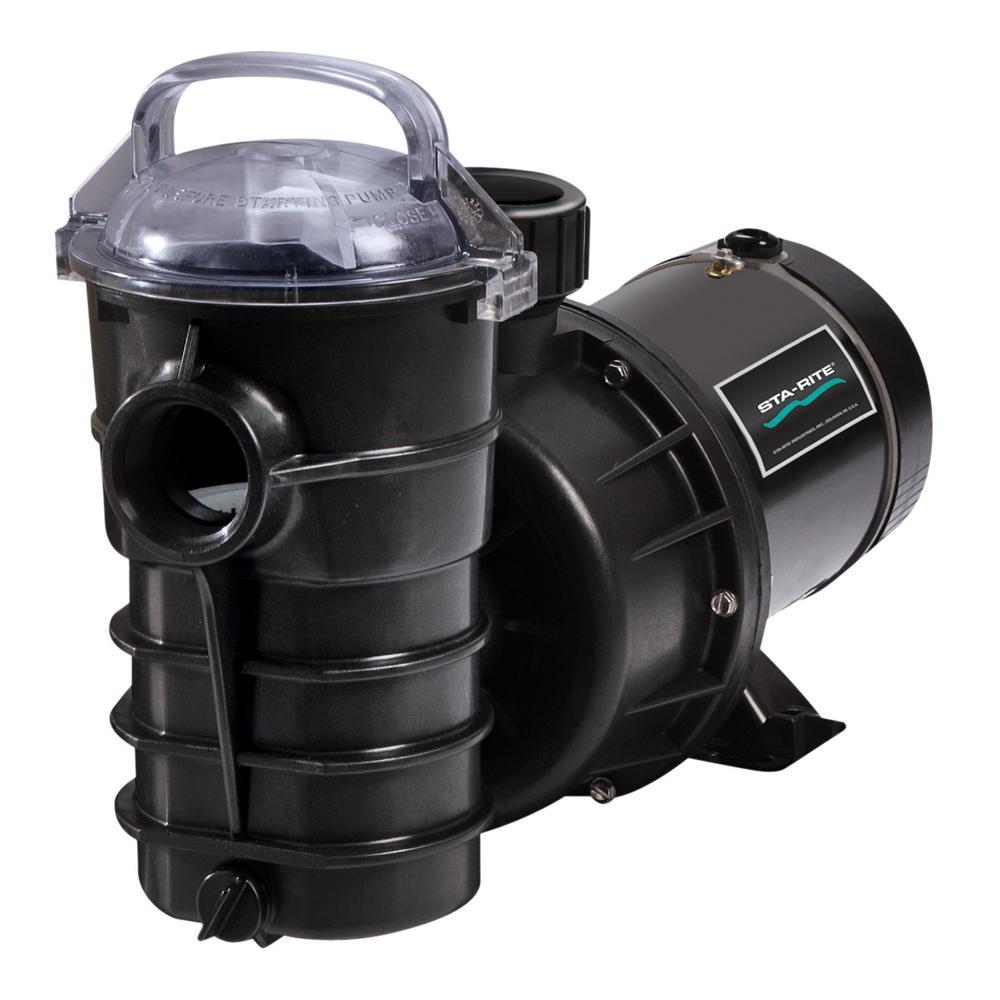 Dynamo 1-1/2 HP Single Speed Pool Pump