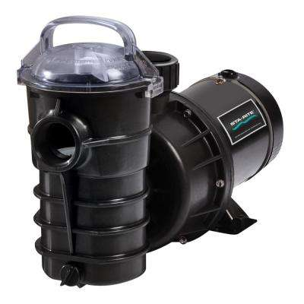 Dynamo 2 HP Single Speed Pool Pump
