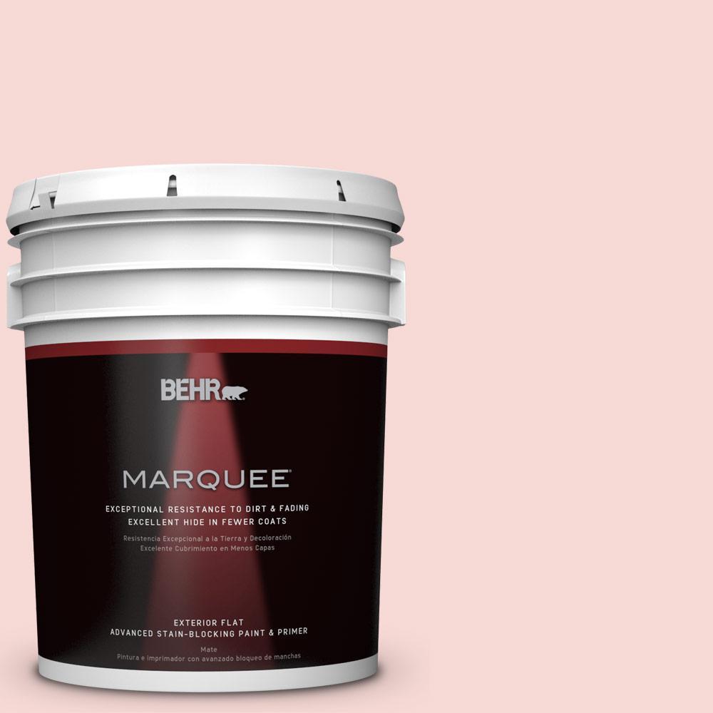 5-gal. #M160-1 Cupcake Pink Flat Exterior Paint