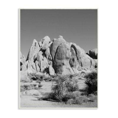 """12.5 in. x 18.5 in. """"Desert Landscape Photography"""" by In House Art Printed Wood Wall Art"""