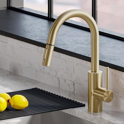 Oletto Single Handle Pull-Down Kitchen Faucet with Dual-Function Sprayer in Gold