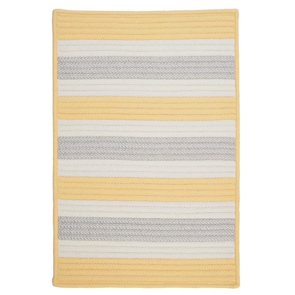 Home Decorators Collection Baxter Yellow Shimmer 2 Ft X 3 Indoor Outdoor Braided Area Rug