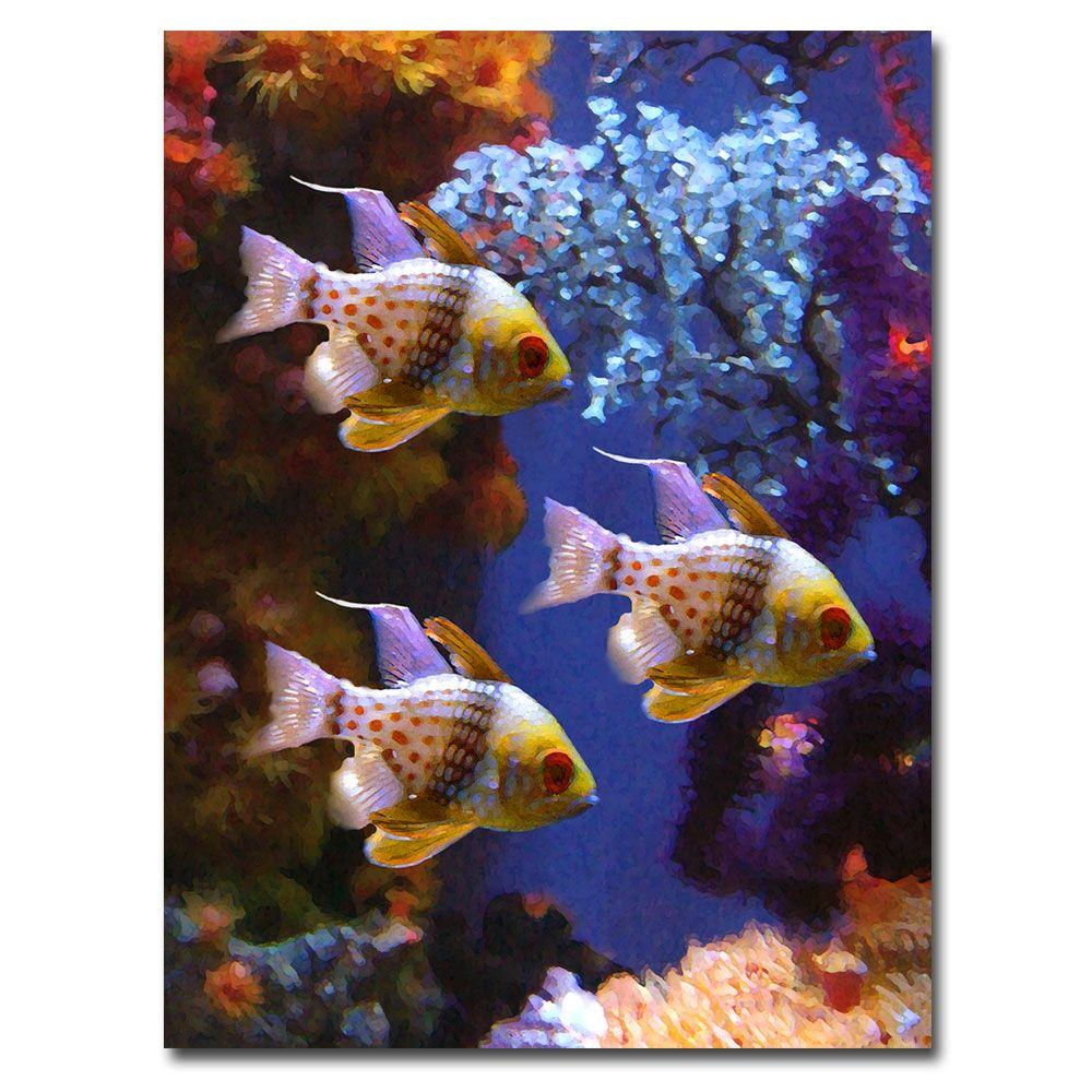 null 47 in. x 35 in. Three Pajama Fish Canvas Art