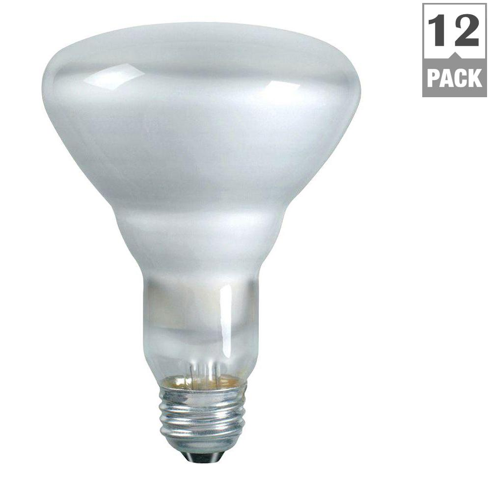 Philips 65-Watt BR30 Incandescent DuraMax Indoor Flood Light Bulb ...