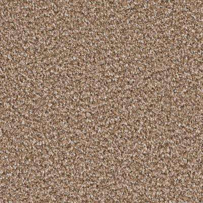 Carpet Sample - Palace II - Color Mountrail Texture 8 in. x 8 in.