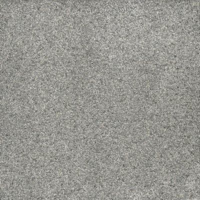Brightstone II - Color Treasure 12 ft. Texture Carpet