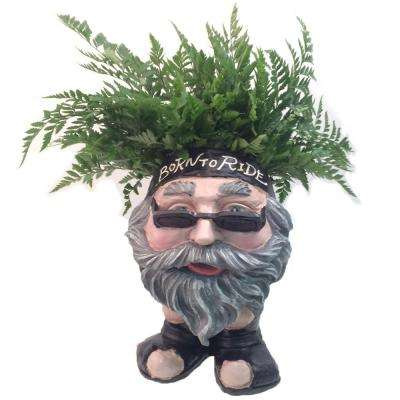13 in. H Biker Dude Painted Muggly Face Planter in Motorcycle Attire Statue Holds 4 in. Pot