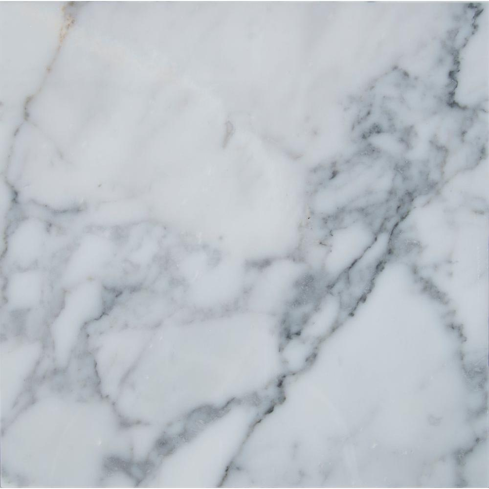 Favorite MSI Statuary Venato 12 in. x 12 in. Polished Marble Floor and Wall  DO64