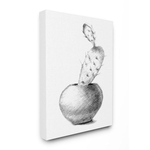 Stupell Industries 16 in. x 20 in. ''Cactus Graphite Drawing'' by