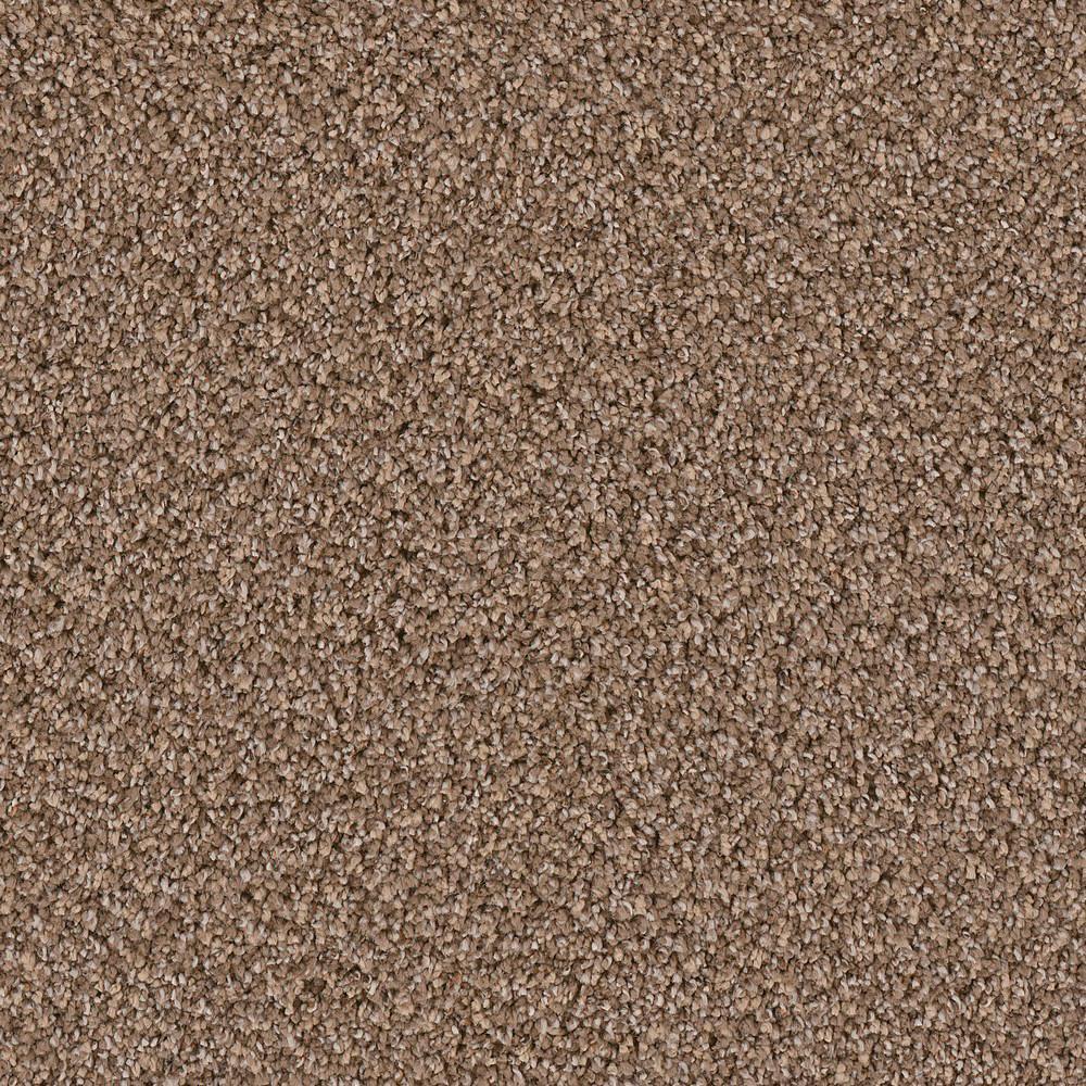 Carpet Sample - Goldsberry I - Color Winner Twist 8 in. x 8 in.