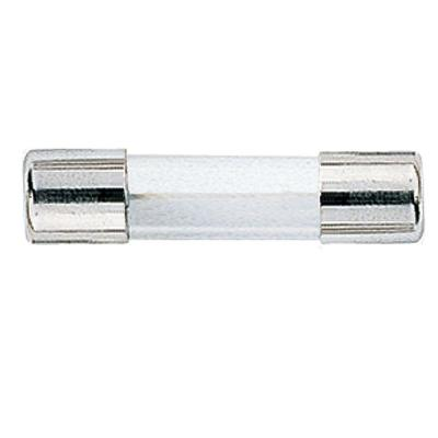 GMA Series 3 Amp Silver Electronic Fuses (2-Pack)