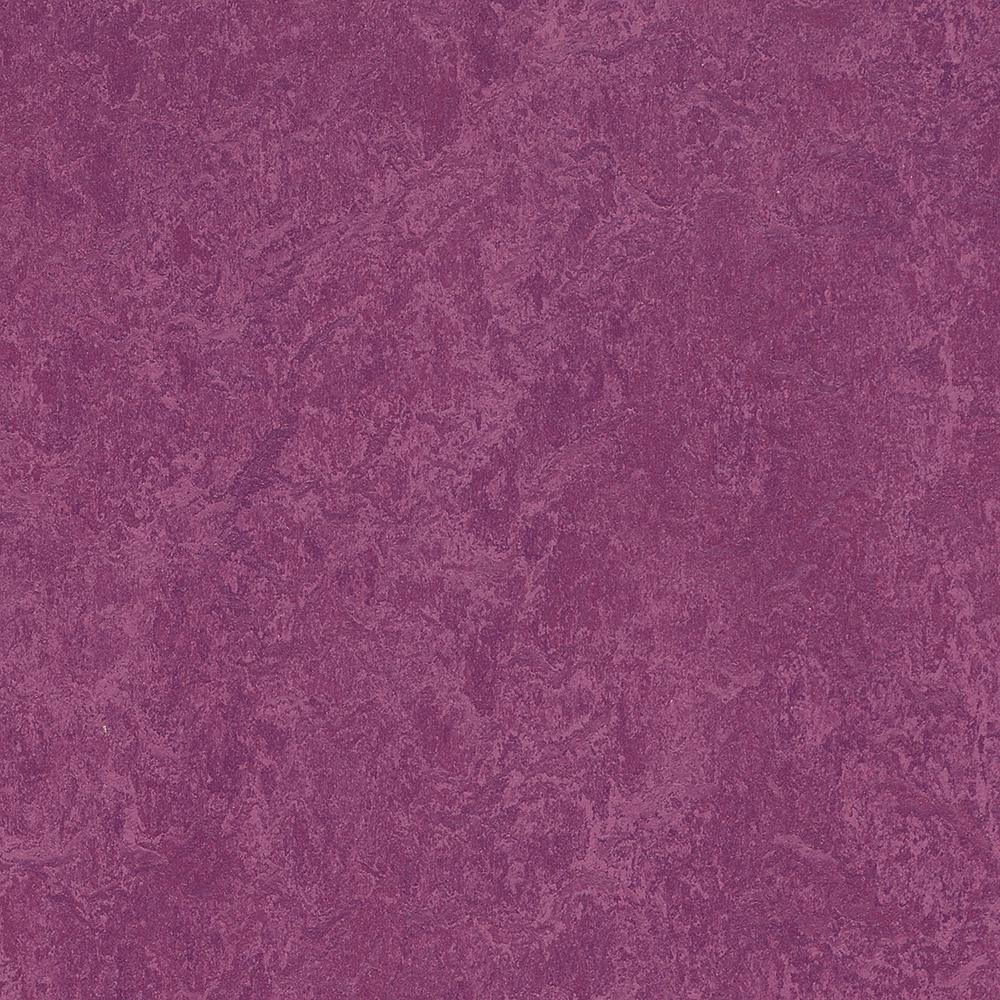 Marmoleum Click Cinch Loc Summer Pudding 9.8 mm Thick x 11.81 in. Wide x 11.81 in. Length Laminate Flooring (6.78 sq. ft. / case)