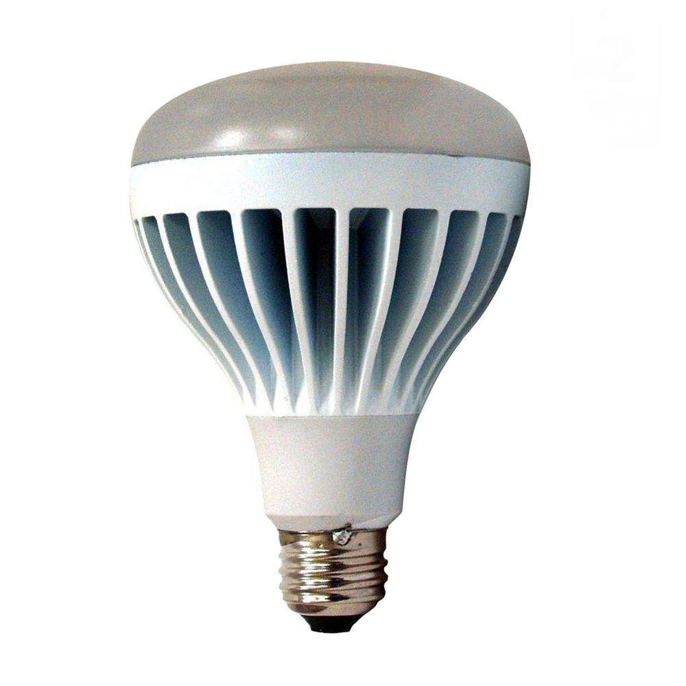 EcoSmart 14-Watt (75W) Soft White (2700K) BR30 LED Flood Light Bulb (2-Pack)
