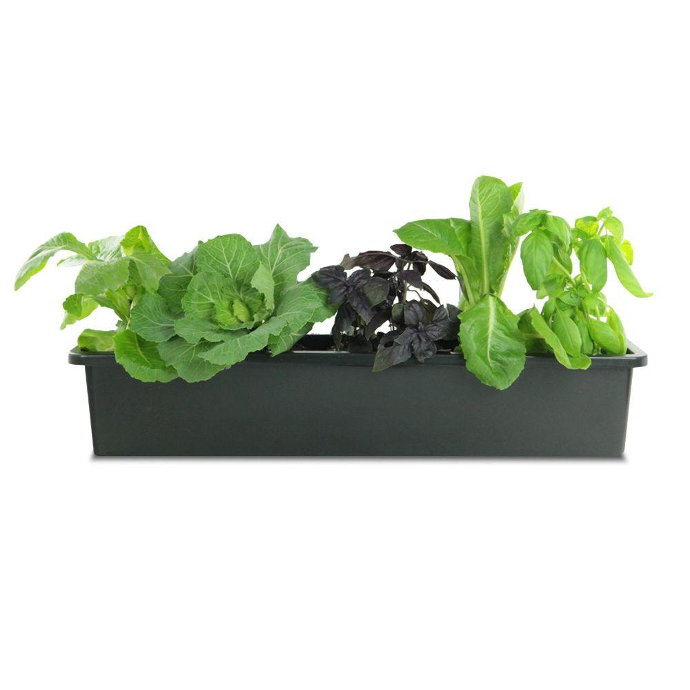 Pennington 19 9 In Black Plastic Liner Window Box 100507829 The