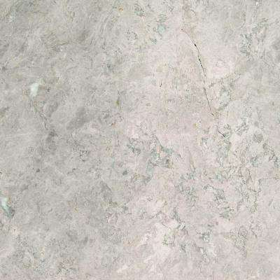 Tundra Gray 18 in. x 18 in. Polished Marble Floor and Wall Tile (9 sq. ft. / case)