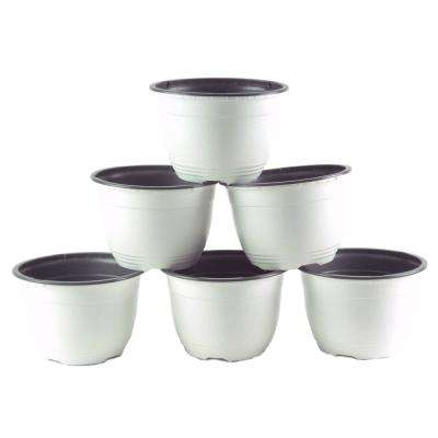 6 in. W White/Gray Plastic Pot (6-Pack)