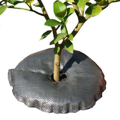 TreeDiaper 18 in. Plant Hydration Ring for Potted Plants and Seedlings (2-Pack)
