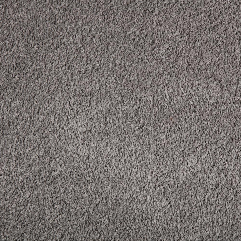 PetProof Collinger II-Color Meandering Textured 12 ft. Carpet