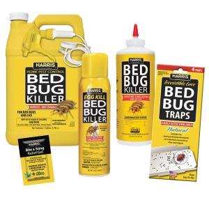 Bed Bug Spray Home Depot >> Carpet Beetle Traps Lowes – Review Home Decor